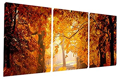 Gardenia Art - Gold Maples Forest Canvas Prints Wall Art Stretched and Framed Modern Decor