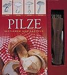 Pilze Boxset: Bestimmen und Sammeln