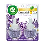Best Air Wick Air Fresheners - Air Wick Scented Oil Air Freshener, Lavender Review
