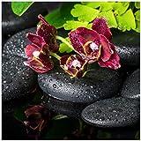 Wallario Glasbild Dunkelrote Orchideen-Blüte auf Schwarzen Steinen mit Regentropfen - 50 x 50 cm in Premium-Qualität: Brillante Farben, freischwebende Optik