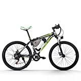 RICH BIT Electric Bike 250 W Motor High Performance Lithium-Ionen-Akku Aluminum Rahmen Mountain Fahrrad Cross Country für Unisex Schwarz-Grün