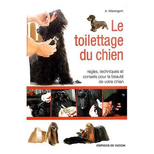 Le toilettage du chien : Règles, techniques et conseils pour la beauté de votre chien
