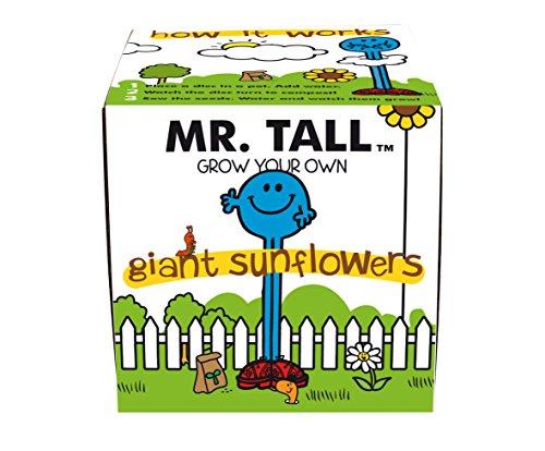 Mr Men Mr Tall  Kit, Crescere Il Proprio Girasole Gigante