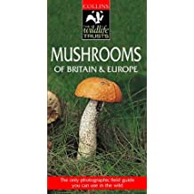 Collins Wildlife Trust Guide – Mushrooms of Britain and Europe (Collins Wildlife Trust Guides)