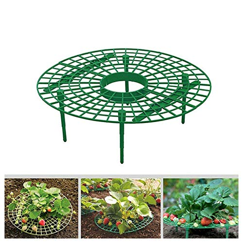 Upxiang Erdbeer Reifer 5 Stück Erdbeerstütze Schutz Kunststoff-Ständer Erdbeerpflanzen Hängend-Fern von FäuleWachstums Unterstützung Halten (A) - Unterstützung Halten
