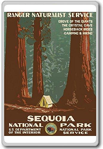 1938, Sequoia National Park, USA - Vintage Travel Fridge Magnet - Kühlschrankmagnet