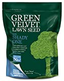 Best Partial Repair Kits - Green Velvet 1.75Kg Lawn Seed The Shady One Review