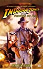 Indiana Jones, tome 7 - Indiana Jones et les pirates du ciel