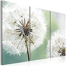 Wandbilder Blumen Pustelblume 120x80 Cm