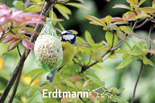 Erdtmanns 35 Sommer-Meisenknödel im Eimer, 1er Pack (1 x 3000 g) - 12