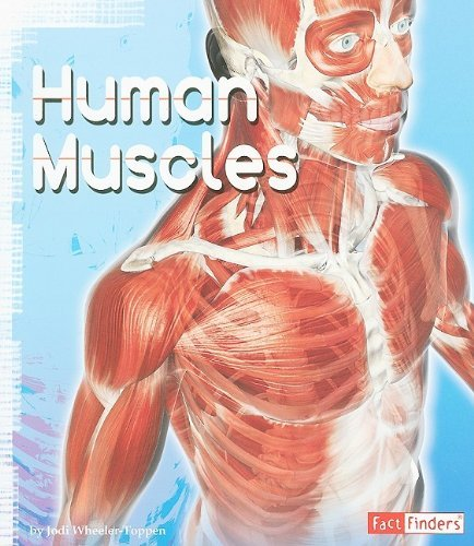 Human Muscles (Anatomy Class) by Jodi Toppen Wheeler (2009-11-01)