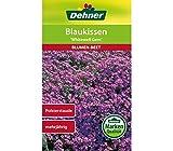 Dehner Blumen-Saatgut, Blaukissen