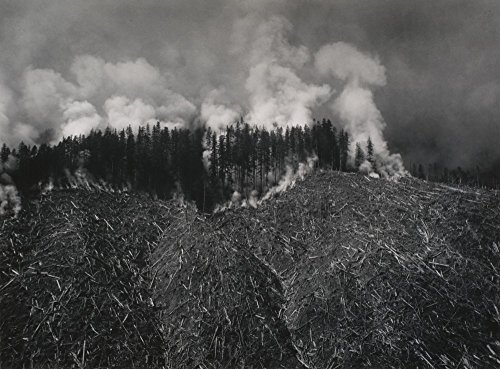 Das Museum Outlet-Darius Kinsey-Crescent Camp Number One, Holz Views CO., Seattle, gespannte Leinwand Galerie verpackt. 29,7x 41,9cm