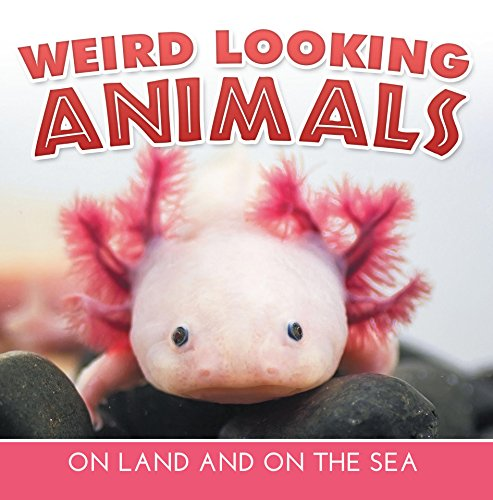 Weird Looking Animals On Land and On The Sea: Animal Encyclopedia for Kids - Wildlife (Children's Animal Books) (English Edition) - Hund Puzzle Jig Saw