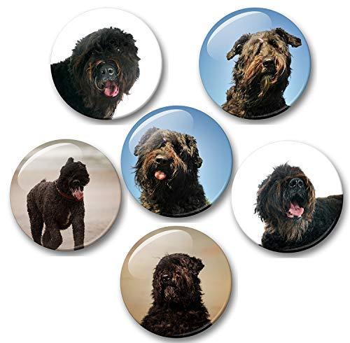 Merchandise for Fans Bouvier des Flandres Hund - 6 große Kühlschrankmagnete Ø 5 cm [ 01 ] für Memoboard Pinnwand Magnettafel Whiteboard -