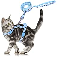 Adjustable Cute Pet Small Cat Kitten Harness Nylon Rabbit Print Lead Leash Set with Buckle Blue