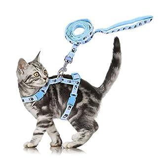 adjustable cute pet small cat kitten harness nylon rabbit print lead leash set with buckle blue Adjustable Cute Pet Small Cat Kitten Harness Nylon Rabbit Print Lead Leash Set with Buckle Blue 51D81PqU9sL