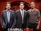 Criminal Minds - Staffel 9 [dt./OV]