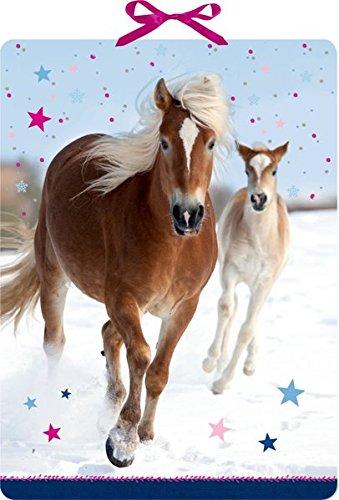 Wandkalender - Pferdefreunde im Schnee