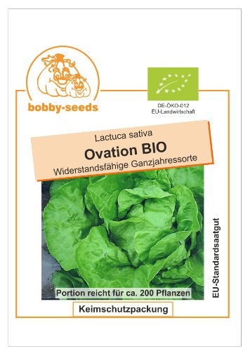 Bobby-Seeds BIO-Salatsamen Ovation Kopfsalat Portion