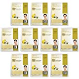 Dermal Korea Collagen Essence Mask - Ginkgo (10 pack)