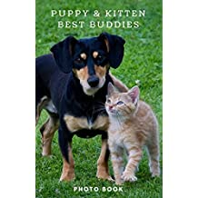 Puppy & Kitten best buddies: See lovely moments when cute puppies & kittens are together. (English Edition)