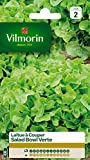 Vilmorin 3609742 Pack de Graines Laitue à Couper Salade Bol Vert