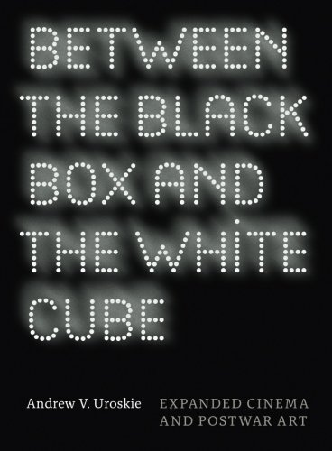 Digitale Black Box (Between the Black Box and the White Cube: Expanded Cinema and Postwar Art)