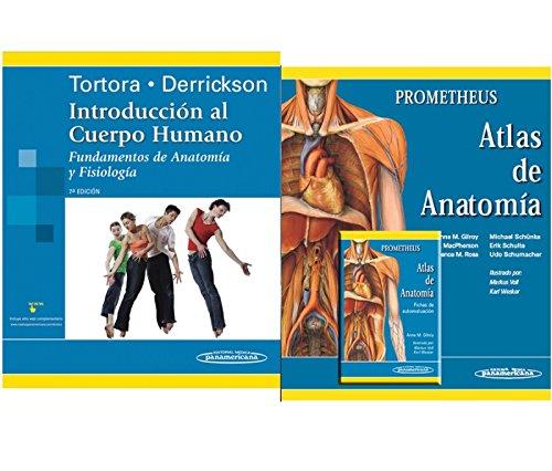 Packs: Colección Gilroy/Tortora/Gilroy fichas por Editorial Médica Panamericana Editorial Médica Panamericana