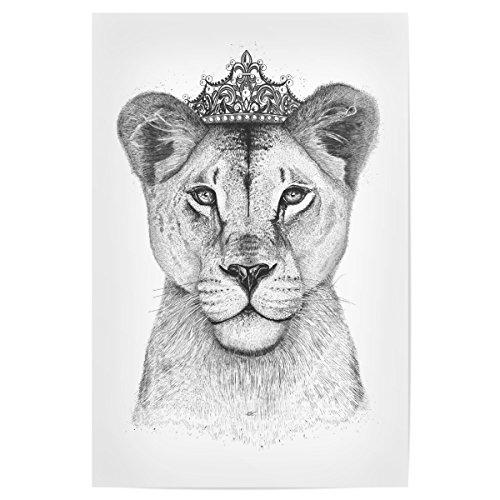 30 cm Lustig The Lioness Queen hochwertiger Design Kunstdruck - Bild Lustig von Valeriya Korenkova (Lioness-bild)