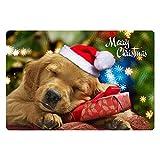 ThiKin Feliz Navidad Animal felpudos Interior Suave Interior Antideslizante Alfombra de Piso para Cocina baño Alfombra 23x16 Lavable Absorbente Alfombra de baño, 1.Dog, Talla única