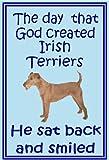 Irish Terrier–Neuheit Hund Kühlschrank Magnete–viele Designs erhältlich