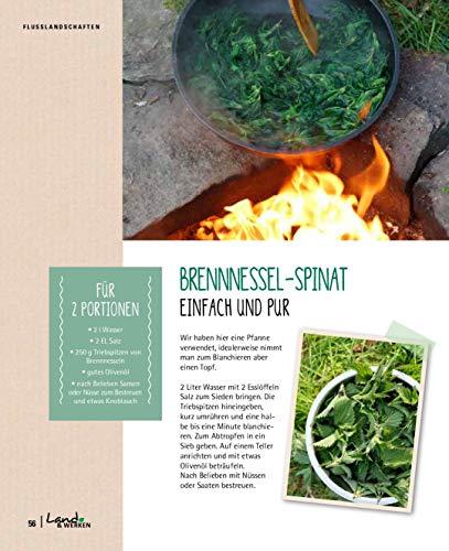 Kräuterkauz: Die faszinierende Welt der essbaren Wildpflanzen - 9