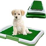DOBO® Lettiera mini wc per cani e gatti cuccioli di piccola taglia con erba sintetica assorbente ottima per addestramento Puppy Potty Pad
