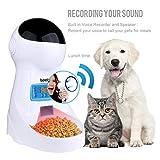 Alimentatore Automatico per Cani e Gatti 3L Iseebiz Distributori Automatici di Cibo per Animali Domestici con Promemoria vocale e Programmatore di Schermo LCD, 4 pasti al Giorno