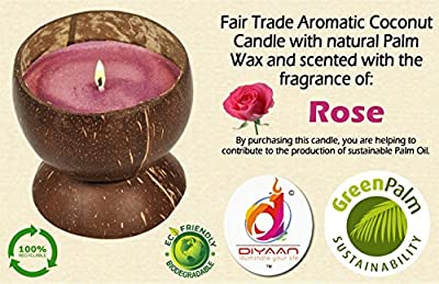 High Quality 100% Natural Handmade Coconut Shell Candle with Sweet Aroma of Rose Fragrance + Pack of 100 White Tea Light Candle Free by Diyaan Candle