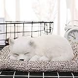 Dekorativer Luftentfeuchter für den Innenbereich, realistisch, für Hunde und Katzen, Panda, mit Matte, aus Baumwolle, Aktivkohle aus Bambus 06