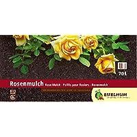 Dr.Soil Premiumqualit/ät dekorative mediterrane Pinienrinde 8-15 mm Pflanzen oder Reptilien Terrarien Mulchen Pflanzen in T/öpfen und Jardinieren 5 Liter f/ür Epiphyten Orchideen Substrate