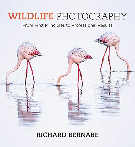 Wildlife Photography por Richard Bernabe