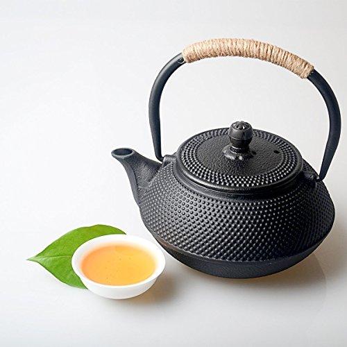 Hwagui teiera giapponese ghisa teiera tetsubin con infusore articoli casa, 0,6 litro/600ml