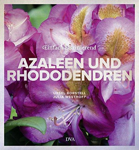 azaleen-und-rhododendren-einfach-faszinierend
