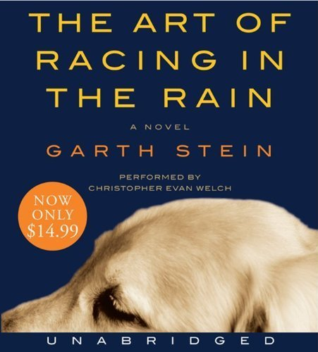 The Art Of Racing In The Rain descarga pdf epub mobi fb2