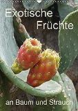 Exotische Früchte an Baum und Strauch (Wandkalender 2019 DIN A3 hoch): Tropisches Obst fotografiert wie es wächst an der Pflanze (Planer, 14 Seiten ) (CALVENDO Natur)