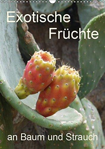 n Baum und Strauch (Wandkalender 2019 DIN A3 hoch): Tropisches Obst fotografiert wie es wächst an der Pflanze (Planer, 14 Seiten ) (CALVENDO Natur) ()