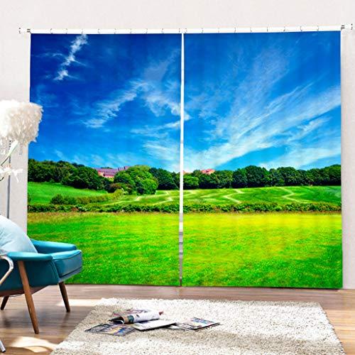 AIYL Gardinen 3D Golf Wiese Druck Blackout Anti-UV-Vorhänge 2 Panels Mit Dekor Öse/Ring Top Window Panels Für Wohnzimmer Schlafzimmer W203cm H213cm -
