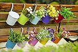 Home Garden Best Deals - Dipamkar® Set of 10 Metal Hanging Flower Pots With Drainage Hole Flower Bucket Balcony Planter Garden Home Ornaments