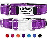 Taglory Personalisiertes Hundehalsband mit Namensschild/Benutzerdefinierte gravierte Pet-ID-Tags ohne Lärm/für Small Medium Große Hunde/Reflektierend/Violett