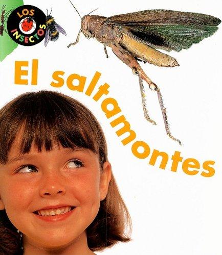 El Saltamontes = Grasshopper (Los Insectos) por Karen Hartley