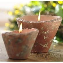 st eval ingls hedgerow vela aromtica maceta grande u u citronella
