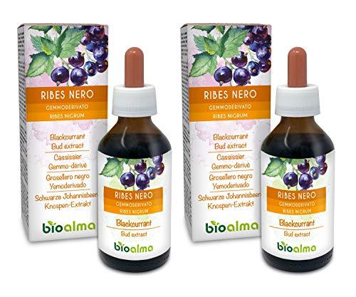 RIBES NERO (Ribes nigrum) gemme fresche BIOALMA® Gemmoderivato analcoolico   Estratto liquido gocce 200 ml   Integratore alimentare   Vegano